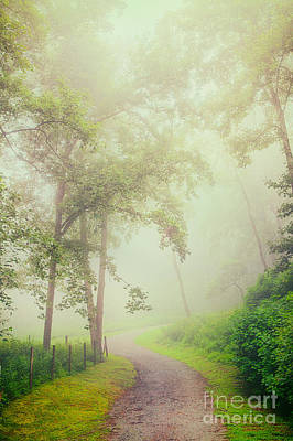 Foggy Path - Blue Ridge Parkway Art Print