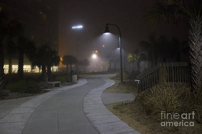 Photograph - Foggy Path by Nelson Watkins