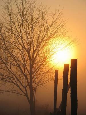 Photograph - Foggy Pillars by Dale Kauzlaric