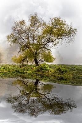 Foggy Reflections Art Print by Debra and Dave Vanderlaan