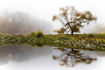 Foggy Reflections Landscape Art Print by Debra and Dave Vanderlaan