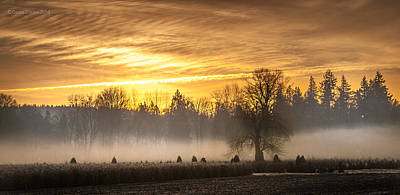 Photograph - Foggy Sunrise by Cassius Johnson