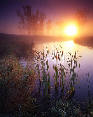Photograph - Foggy Sunrise by Ray Mathis