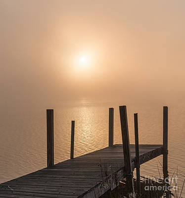 Photograph - Foggy Sunrise by Sharon Seaward