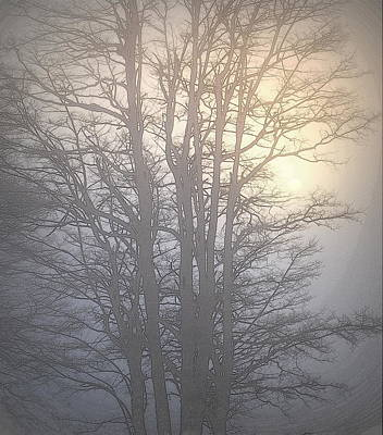 Photograph - Foggy Sunset II by Kathy Sampson