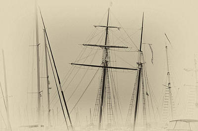 Photograph - Tall Ships by Thomas Hall