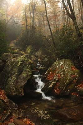 Foggy Waterfall  Art Print by AR Annahita