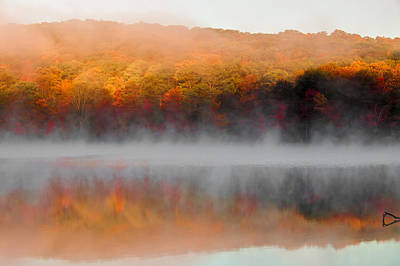 Photograph - Foilage In The Fog by Anthony Sacco