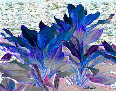 Canna Digital Art - Foliage Fantasia by Asok Mukhopadhyay