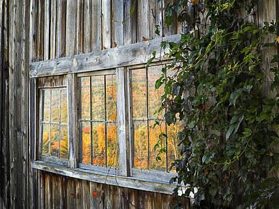Photograph - Foliage Reflections by John Vose