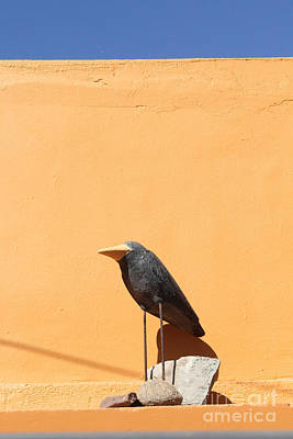 Folk Art Crow Todos Santos Art Print by Linda Queally