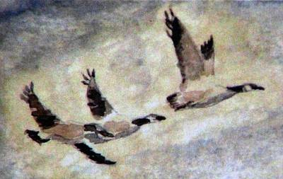 Canadian Geese Painting - Follow Me by Angela Davies