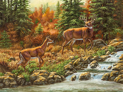 Waterfalls Painting - Whitetail Deer - Follow Me by Crista Forest