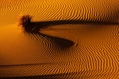Sahara Digital Art - Follow That Curve by Phil Dyer