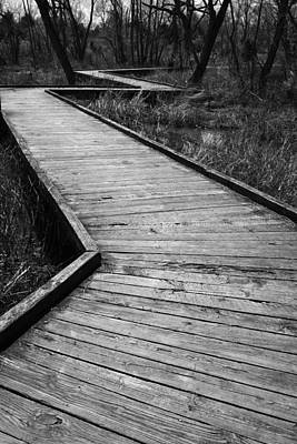 Photograph - Follow The Boardwalk by Robert Clayton