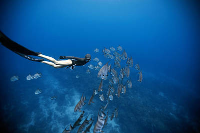 Apnea Photograph - Follow The Fish by One ocean One breath