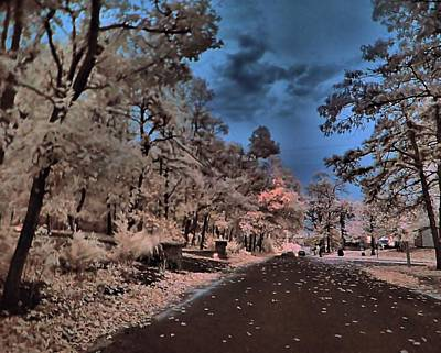 Photograph - Follow The Infrared Road by Thomas  MacPherson Jr