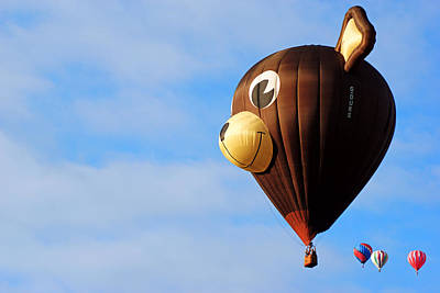 Photograph - Follow The Leader - Belgian Bear Balloon by Daniel Woodrum