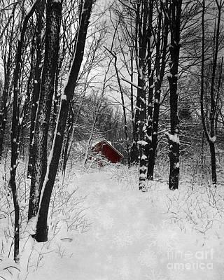 Follow The Snowflake Trail Art Print