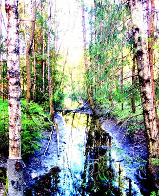 Widerberg Photograph - Follow The Stream And Get Lost In The Wilderness  by Hilde Widerberg