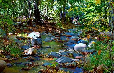 Dappled Light Photograph - Following The Creek by Marcia Breznay