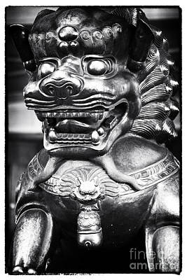 Foo Dog Print by John Rizzuto