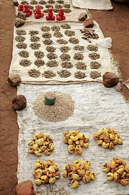 Solanum Lycopersicum Photograph - Food Market by Mauro Fermariello