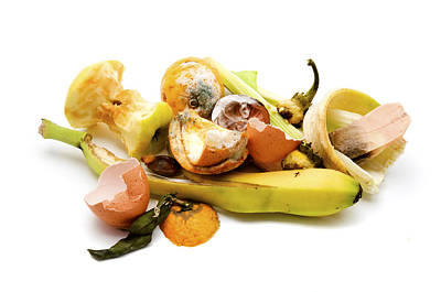 Waste Photograph - Food Waste by Fabrizio Troiani