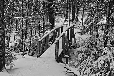 Foot Bridge In Winter Art Print by David Rucker