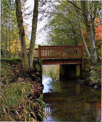 Photograph - Foot Bridge by Ron Roberts
