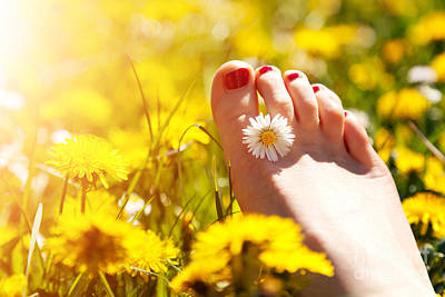 Nails Photograph - Foot Of A Young Woman With A Spring Flower In Fingers by Michal Bednarek