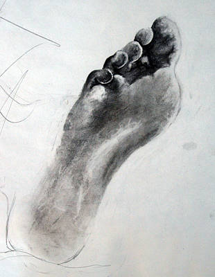 Drawing - Foot Study by Corina Bishop