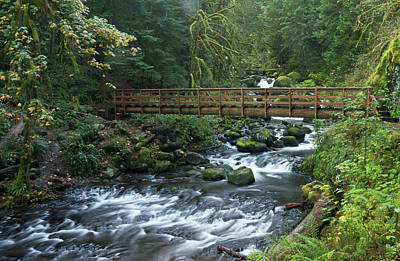 Sutton Photograph - Footbridge Across Oneonta Creek by William Sutton