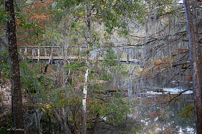 Photograph - Footbridge Across The Santa Fe River At Oleno State Park Florida by RD Erickson
