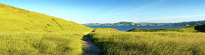 Footpath At San Luis Reservoir, Pacheco Art Print by Panoramic Images