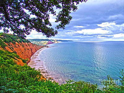 Footpath To Sidmouth Art Print by Andrew Middleton