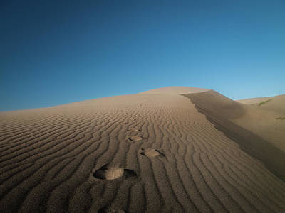 Photograph - Footprints In The Sand by Danielle Bednarczyk