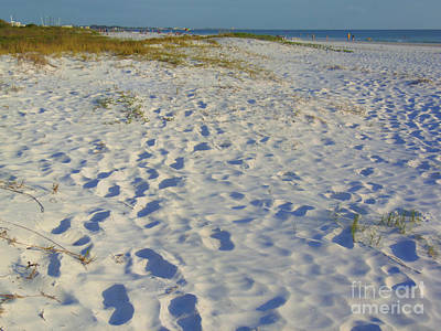 Photograph - Footprints In The Sand by Lou Ann Bagnall