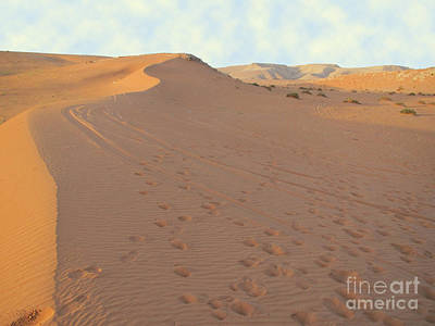 Photograph - Footprints In The Sand by Michael Waters