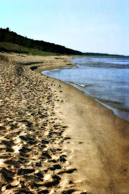 Photograph - Footprints In The Sand by Michelle Calkins