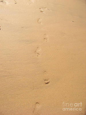 Footprints In The Sand Art Print by Pixel  Chimp