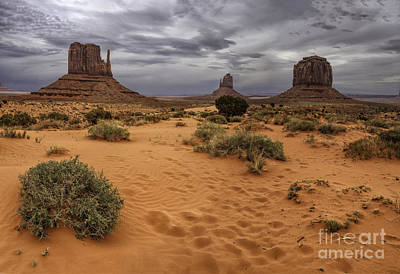 Photograph - Footprints In The Sand by Stuart Gordon