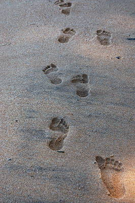 Photograph - Footprints In The Sand by Tamyra Crossley