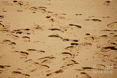 Photograph - Footprints In The Sand by Tom Doud