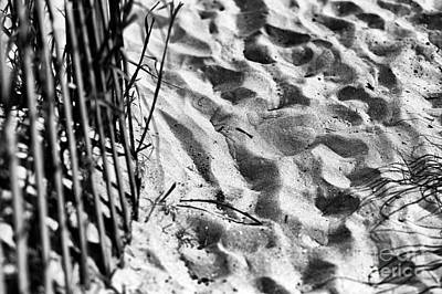 Photograph - Footprints On North Myrtle Beach Mono by John Rizzuto