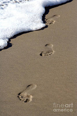 Photograph - Footsteps by David Lee