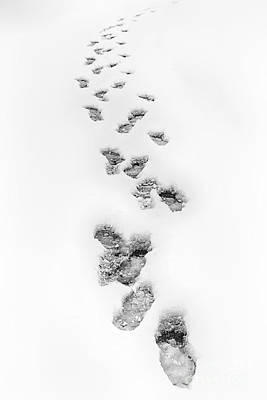 Footsteps In Snow Art Print