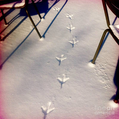 Phoneography Photograph - Footsteps In The Snow by Sara  Meijer