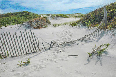 Photograph - Footsteps Through The Sand Dune Fence by Gary Slawsky