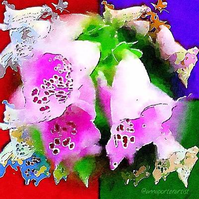 Abstract Flowers Photograph - Flowers For Andy by Anna Porter